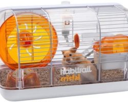 The 10 Well-Made Hamster Cages for Your Little Pets in 2021