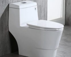 Editor's Pick: Top 10 Best Dual Flush Toilets in 2021