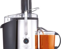 Chef's Pick: Top 10 Best Carrot Juicers in 2021
