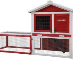 The 10 Hutches Best for Your Rabbit Pets and Ferrets in 2021