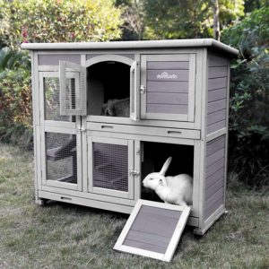 Hutch for Rabbits